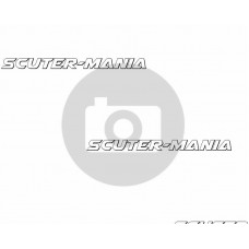 axle bolt Polini pentru Torsen WD swing arm / engine brace pentru Piaggio Quartz, Zip 50 SP LC 96-00, Zip 50 SP LC 2001-