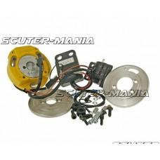 Aprindere rotor intern Malossi MHR pentru Piaggio LC